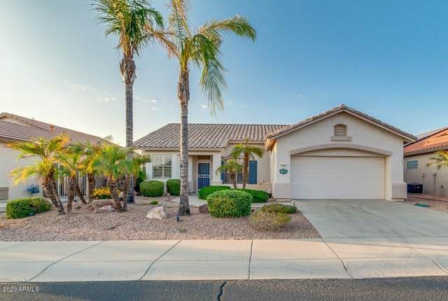 17646 N Coconino Drive, Surprise, AZ 85374 (MLS #6137012) :: Dave Fernandez Team | HomeSmart