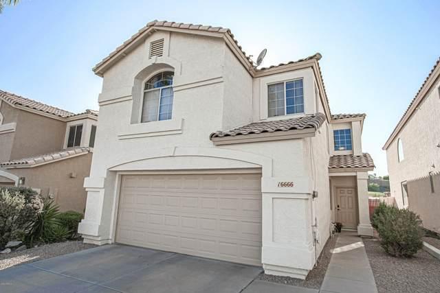 16666 S 21ST Street, Phoenix, AZ 85048 (MLS #6137028) :: Brett Tanner Home Selling Team