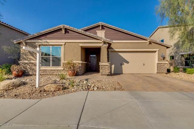 2918 W Laredo Lane, Phoenix, AZ 85085 (MLS #6137055) :: Yost Realty Group at RE/MAX Casa Grande