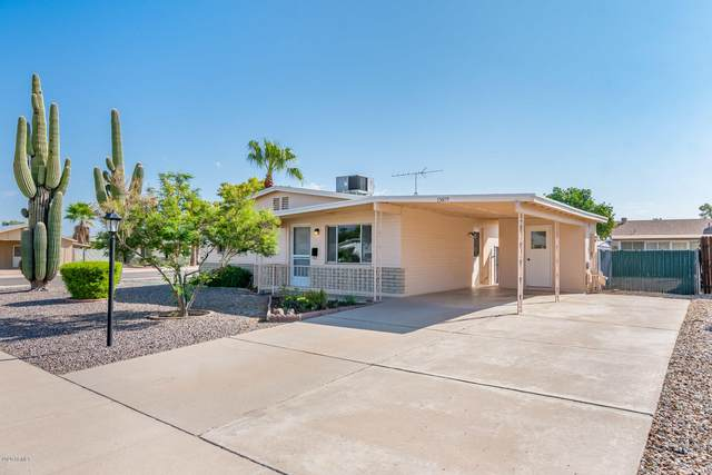 15619 N 23RD Street, Phoenix, AZ 85022 (MLS #6137056) :: Long Realty West Valley