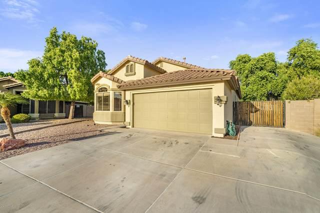 8772 W Quail Avenue, Peoria, AZ 85382 (MLS #6137065) :: Long Realty West Valley