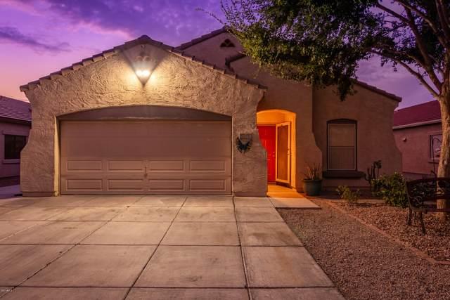 15968 N Cristine Lane, Surprise, AZ 85388 (MLS #6137072) :: Long Realty West Valley