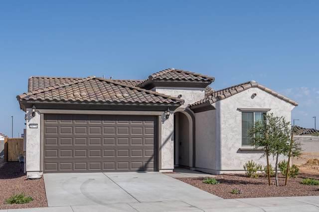 26776 W Zachary Drive, Buckeye, AZ 85396 (MLS #6137079) :: Long Realty West Valley
