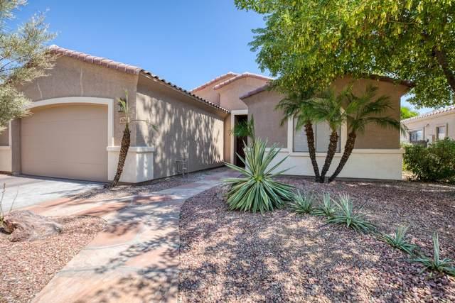 6763 N 79TH Drive, Glendale, AZ 85303 (MLS #6137086) :: Devor Real Estate Associates
