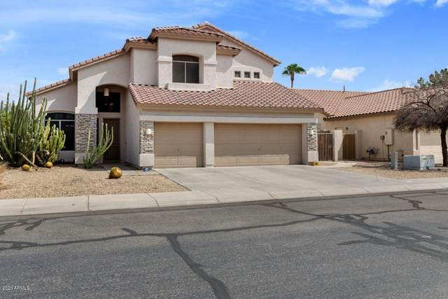 121 N Forest Drive, Chandler, AZ 85226 (MLS #6137130) :: The Everest Team at eXp Realty