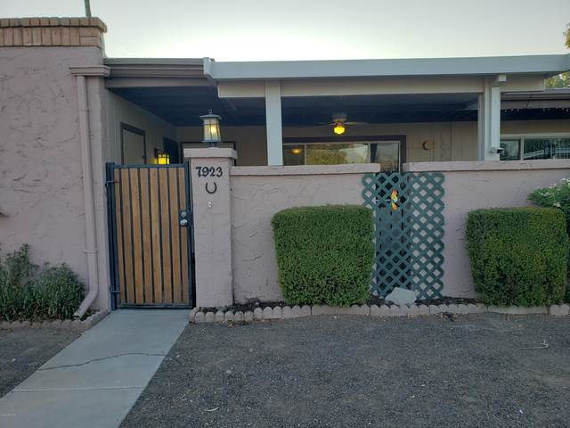 7923 N 61ST Avenue, Glendale, AZ 85301 (MLS #6137146) :: The Luna Team