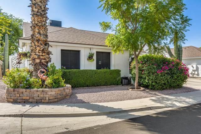 3307 E Longhorn Drive, Phoenix, AZ 85050 (MLS #6137201) :: RE/MAX Desert Showcase