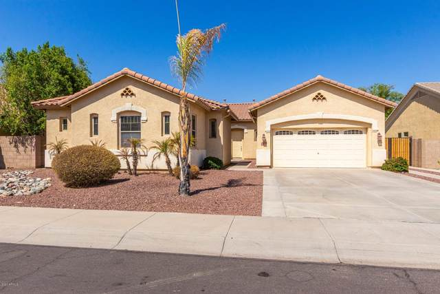 13030 W Vista Paseo Drive, Litchfield Park, AZ 85340 (MLS #6137212) :: The Garcia Group