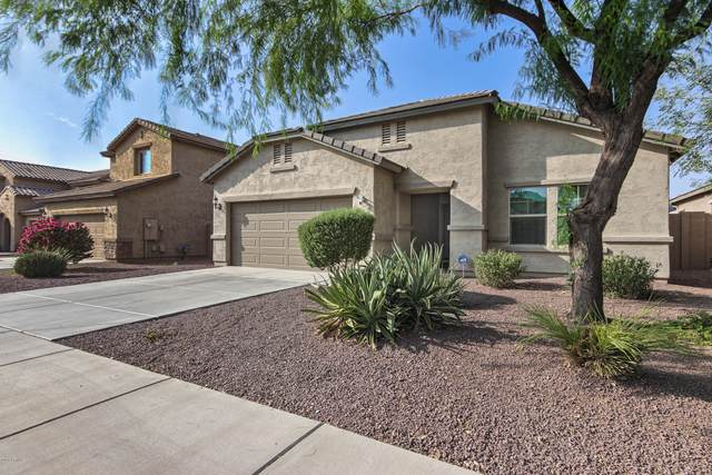 10946 E Sebring Avenue, Mesa, AZ 85212 (MLS #6137249) :: Yost Realty Group at RE/MAX Casa Grande