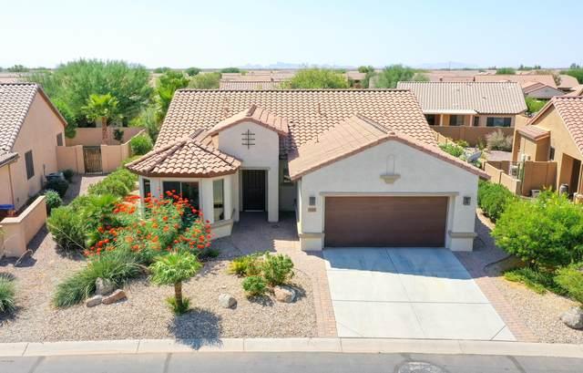 5115 W Mohawk Drive, Eloy, AZ 85131 (MLS #6137279) :: Yost Realty Group at RE/MAX Casa Grande