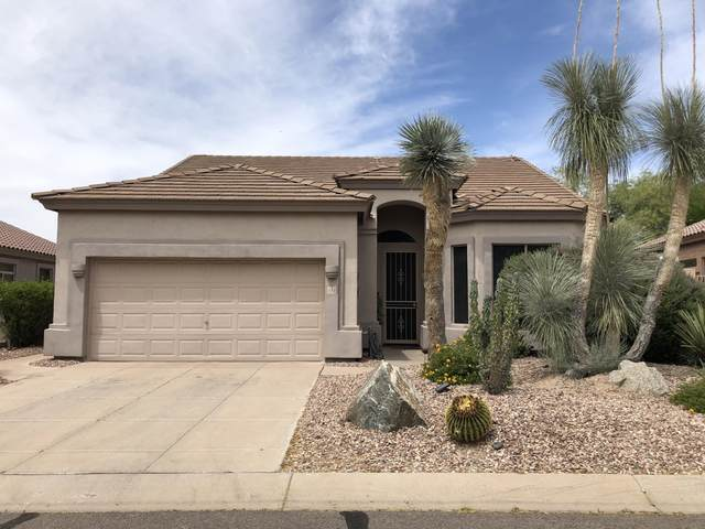 3055 N Red Mountain Road #141, Mesa, AZ 85207 (MLS #6137281) :: Balboa Realty