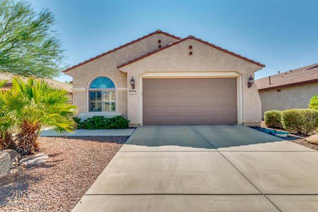 27067 W Escuda Drive, Buckeye, AZ 85396 (MLS #6137299) :: Midland Real Estate Alliance