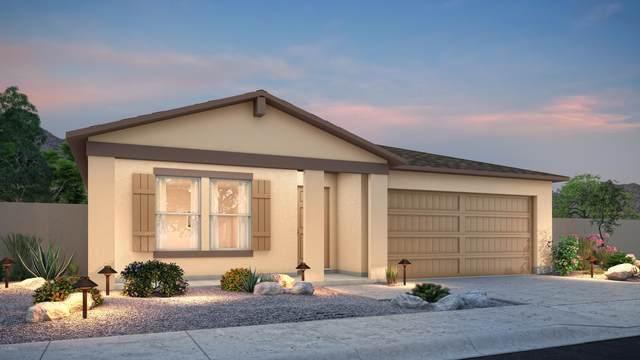 307 E Impala Court, Casa Grande, AZ 85122 (MLS #6137331) :: Yost Realty Group at RE/MAX Casa Grande