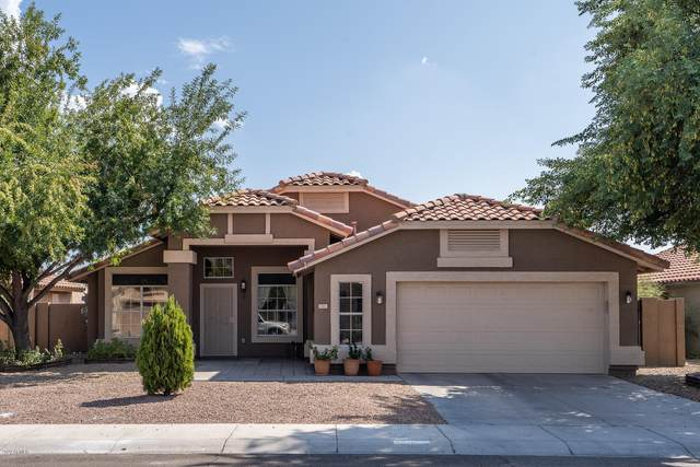 12401 W Roanoke Avenue, Avondale, AZ 85392 (MLS #6137372) :: The Laughton Team