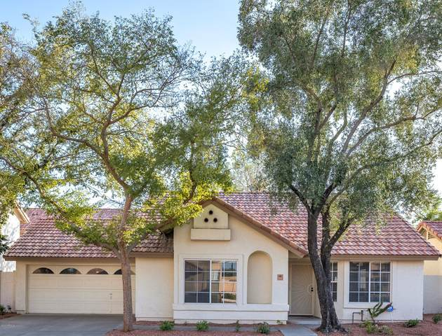 3931 E Orchid Lane, Phoenix, AZ 85044 (MLS #6137391) :: Dijkstra & Co.