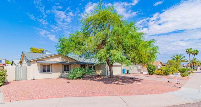 3550 E Crocus Drive, Phoenix, AZ 85032 (MLS #6137436) :: Brett Tanner Home Selling Team