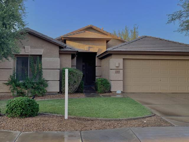 1642 E Wildhorse Place, Chandler, AZ 85286 (MLS #6137453) :: The Results Group