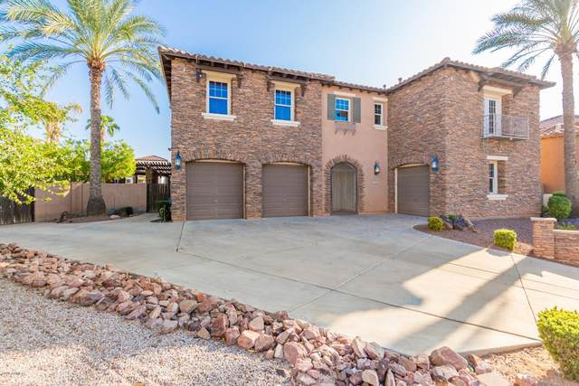 2329 E Aster Drive, Chandler, AZ 85286 (MLS #6137493) :: My Home Group