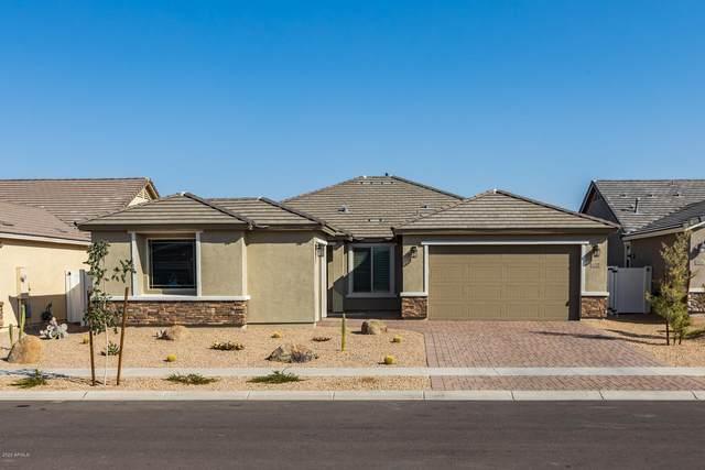 2522 E Novak Way, Phoenix, AZ 85042 (MLS #6137533) :: Brett Tanner Home Selling Team