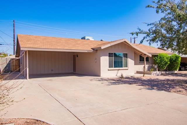 1020 E Bluebell Lane, Tempe, AZ 85281 (MLS #6137544) :: Homehelper Consultants