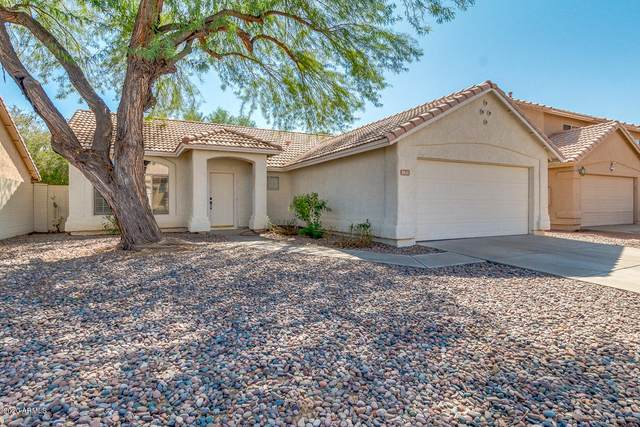 1431 W Gary Drive, Chandler, AZ 85224 (MLS #6137567) :: Dave Fernandez Team | HomeSmart