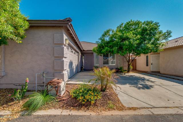 16623 N 19TH Street, Phoenix, AZ 85022 (MLS #6137578) :: The Daniel Montez Real Estate Group