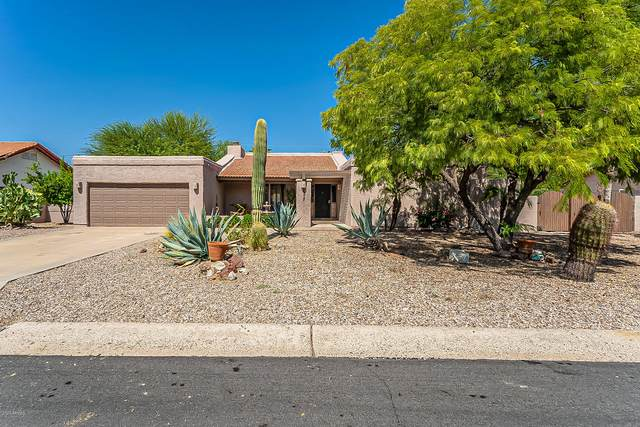 9972 E Del Monte Avenue, Gold Canyon, AZ 85118 (MLS #6137603) :: Balboa Realty