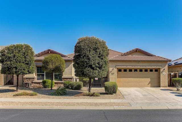 16498 W Mescal Street, Surprise, AZ 85388 (MLS #6137624) :: My Home Group