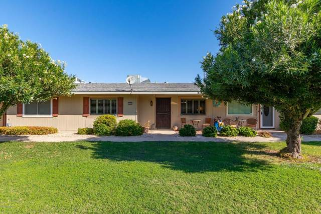 13692 N Newcastle Drive, Sun City, AZ 85351 (MLS #6137631) :: Homehelper Consultants