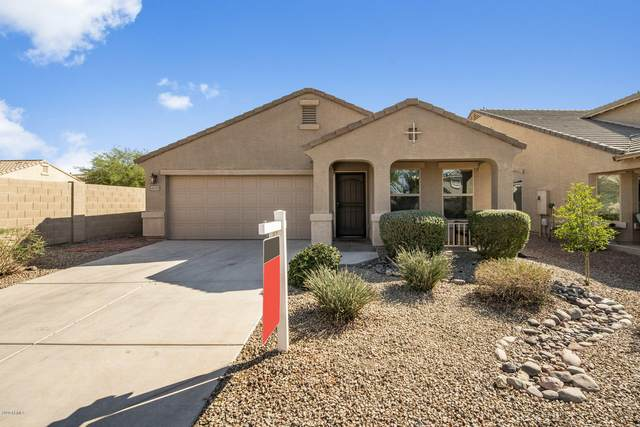 40339 W Hopper Drive, Maricopa, AZ 85138 (MLS #6137639) :: Homehelper Consultants