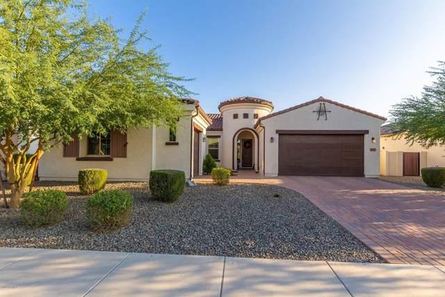 3835 E Carob Drive, Gilbert, AZ 85298 (MLS #6137646) :: The Results Group