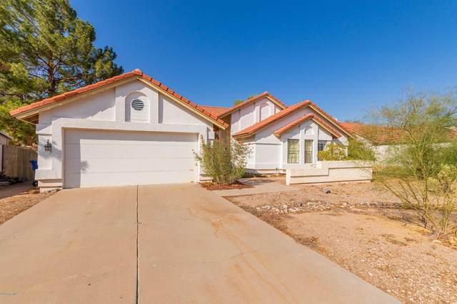 2842 E Norwood Street, Mesa, AZ 85213 (MLS #6137655) :: West Desert Group   HomeSmart