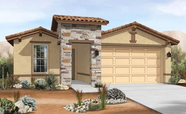 14667 W Dahlia Drive, Surprise, AZ 85379 (MLS #6137672) :: My Home Group
