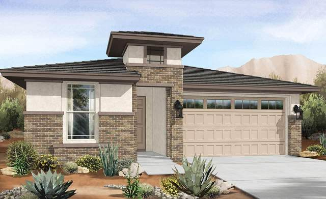 14547 W Dahlia Drive, Surprise, AZ 85379 (MLS #6137701) :: My Home Group