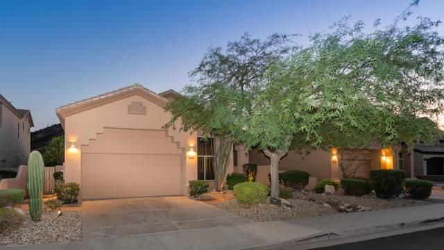 14299 E Thoroughbred Trail, Scottsdale, AZ 85259 (MLS #6137705) :: Howe Realty