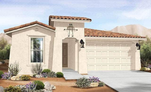 14650 W Aster Drive, Surprise, AZ 85379 (MLS #6137729) :: My Home Group