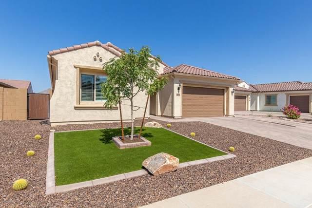 10746 E Ensenada Street, Mesa, AZ 85207 (MLS #6137735) :: Brett Tanner Home Selling Team