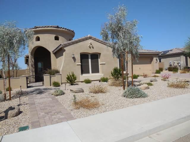 5258 N 147TH Avenue, Litchfield Park, AZ 85340 (MLS #6137793) :: My Home Group