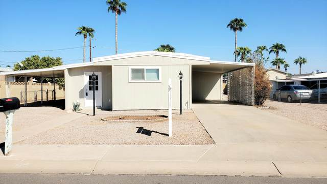 607 S 93RD Way, Mesa, AZ 85208 (MLS #6137816) :: Homehelper Consultants