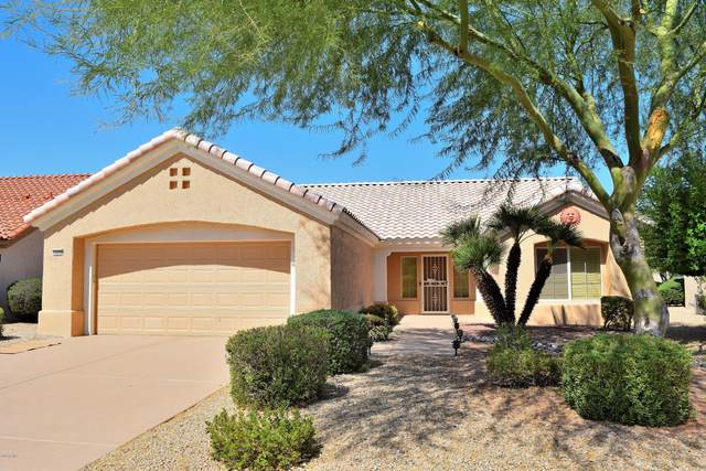 13322 W Broken Arrow Drive, Sun City West, AZ 85375 (MLS #6137829) :: Scott Gaertner Group