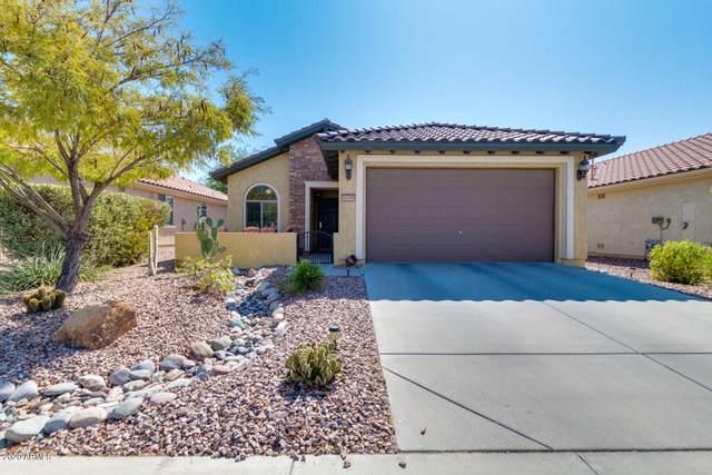 6709 W Mockingbird Way, Florence, AZ 85132 (MLS #6137844) :: Brett Tanner Home Selling Team