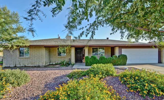 3209 W Cactus Road, Phoenix, AZ 85029 (MLS #6137899) :: My Home Group