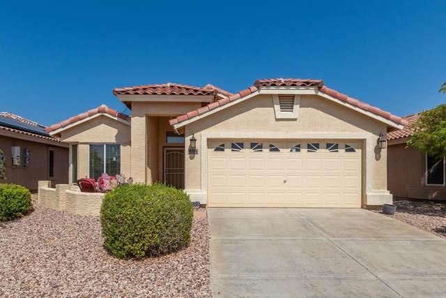 23190 W Antelope Trail, Buckeye, AZ 85326 (MLS #6137932) :: Dave Fernandez Team | HomeSmart