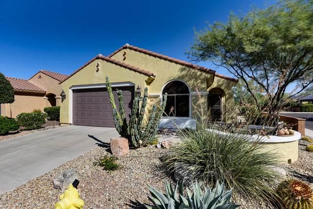 26598 W Irma Lane, Buckeye, AZ 85396 (MLS #6137935) :: Brett Tanner Home Selling Team