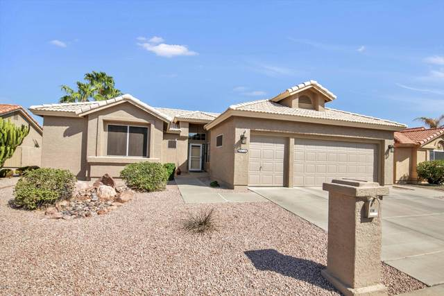 10710 E Coopers Hawk Drive, Sun Lakes, AZ 85248 (MLS #6137953) :: Lucido Agency
