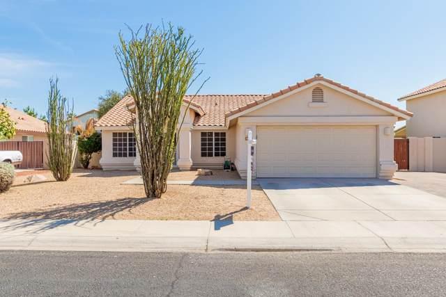 7415 W Robin Lane, Glendale, AZ 85310 (MLS #6137987) :: Howe Realty