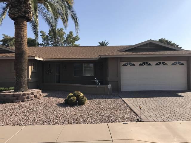 4625 E Dolphin Avenue, Mesa, AZ 85206 (MLS #6138001) :: The Property Partners at eXp Realty
