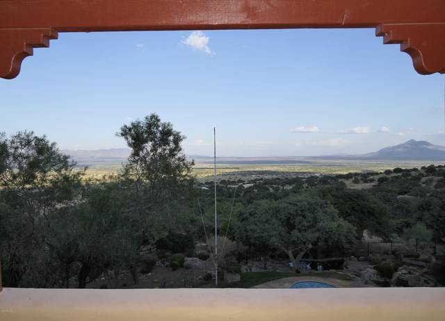 10560 S Stone Ridge Road, Hereford, AZ 85615 (MLS #6138009) :: RE/MAX Desert Showcase