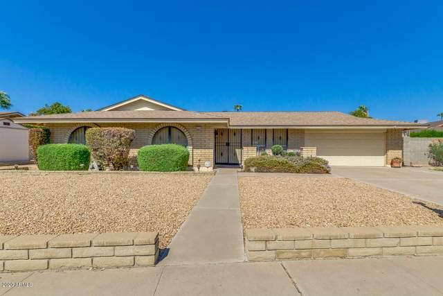 4540 W Laurie Lane, Glendale, AZ 85302 (MLS #6138096) :: The Laughton Team