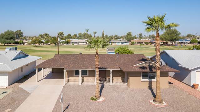 10114 W Palmer Drive, Sun City, AZ 85351 (MLS #6138110) :: Nate Martinez Team